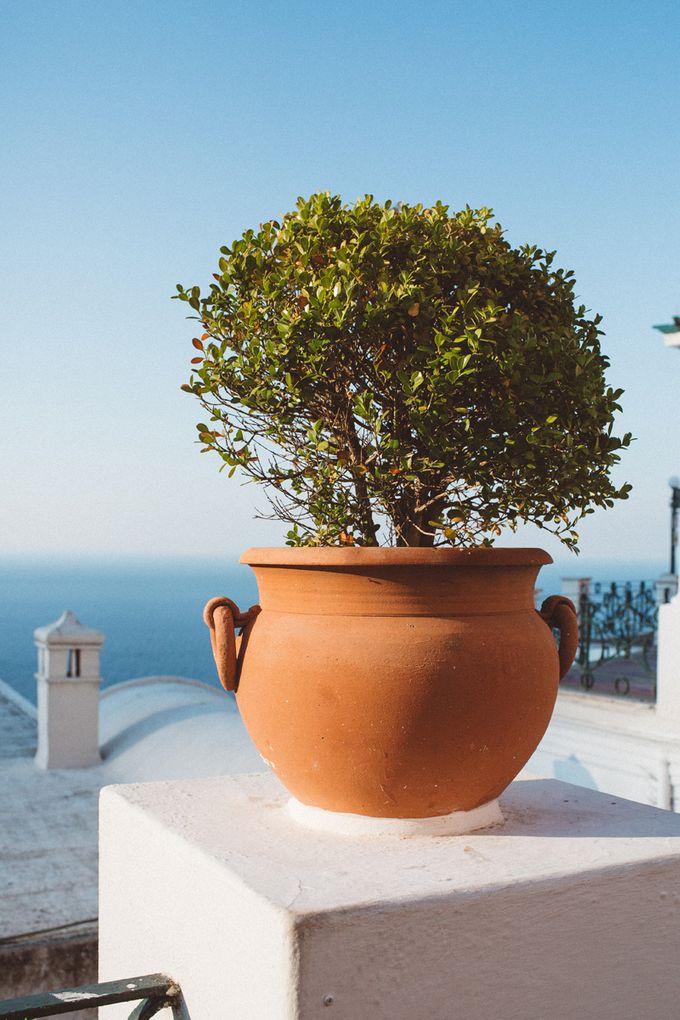Honeymoon in Capri by Paolo Ceritano - 004