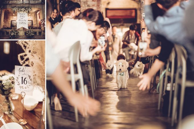 Pineo & Rachel Outdoor Casual Wedding Party at Ubud Bali by GoFotoVideo - 006