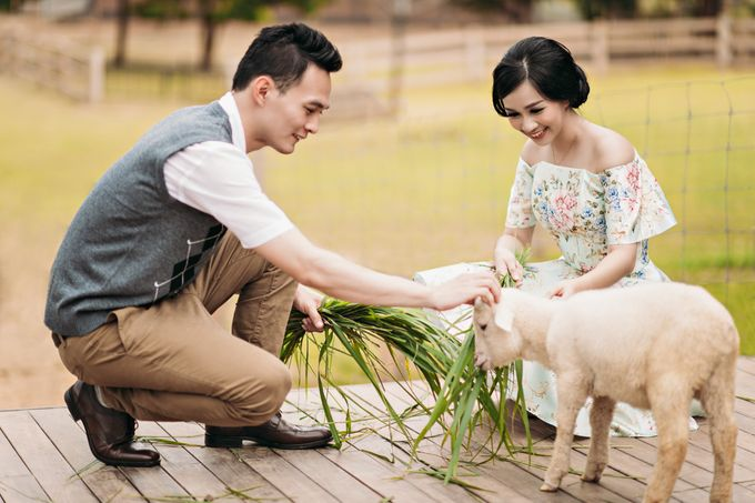 Heri N Erica Prewedding by Hendra & Andre by Cheese N Click Photography - 012