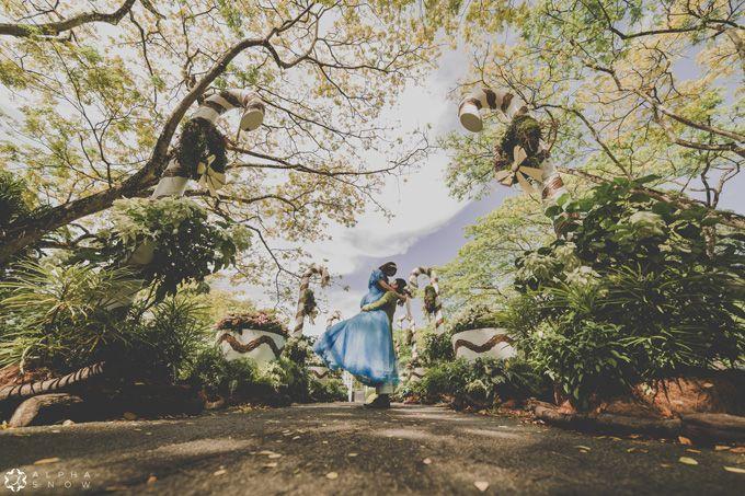 A Cinderella Story by Digio Bridal - 004