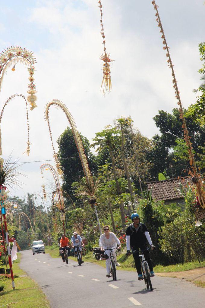 Activities - Eco Cycling by De Umah Bali - 005