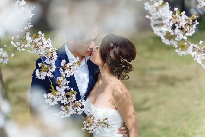Full Bloom Hokkaido Sakura in Spring-Prewedding Overseas by John15 Photography - 005