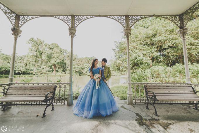 A Cinderella Story by Digio Bridal - 005
