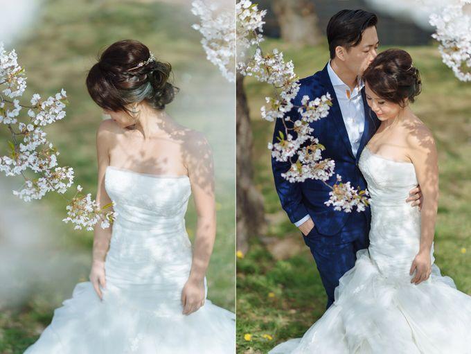 Full Bloom Hokkaido Sakura in Spring-Prewedding Overseas by John15 Photography - 006