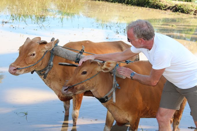 Rural Balinese Life & Farming by De Umah Bali - 009