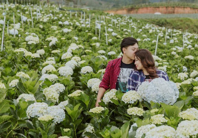 Pre-wedding photography in Da Lat Vietnam by Colours of Vietnam - 003