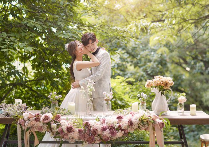 Korea Pre-Wedding Photoshoot - Studio 29 by Willcy Wedding by Willcy Wedding - Korea Pre Wedding - 003