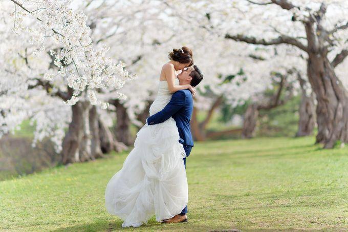 Full Bloom Hokkaido Sakura in Spring-Prewedding Overseas by John15 Photography - 007