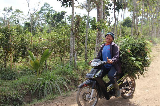 Activities - Eco Cycling by De Umah Bali - 009