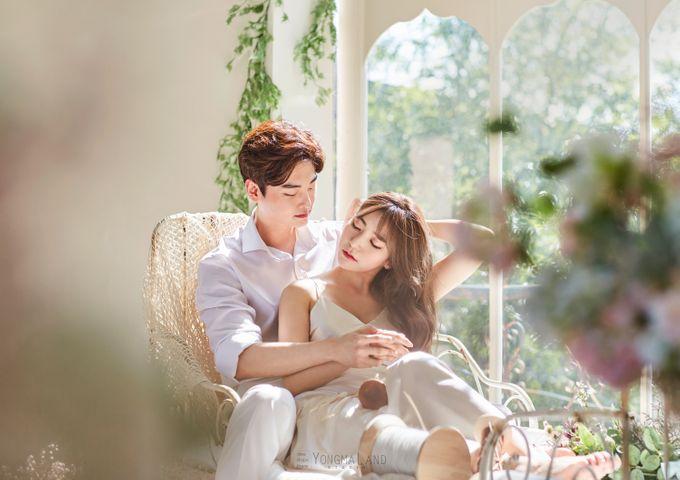 Korea Pre-Wedding Photoshoot - Studio 29 by Willcy Wedding by Willcy Wedding - Korea Pre Wedding - 005