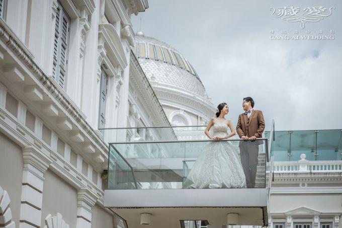 Elegance by Cang Ai Wedding - 004