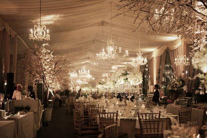 By bridestory add to board elegance by tea rose wedding designer 001 junglespirit Gallery