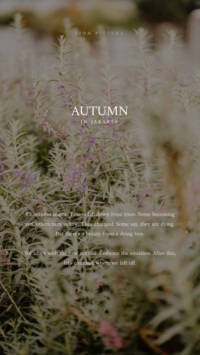 Autumn in Jakarta by Xion Pictura - 008