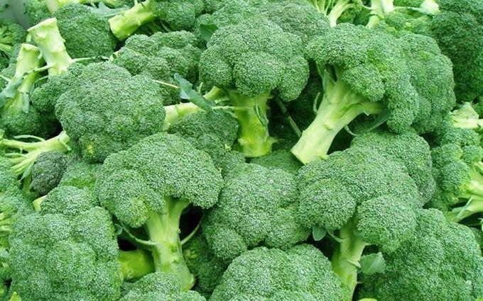 brokoli by bride test vendor - 007