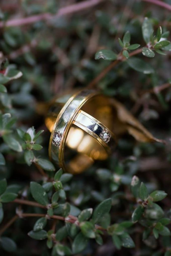 Wedding Rings by Peach Frost Studio - 001