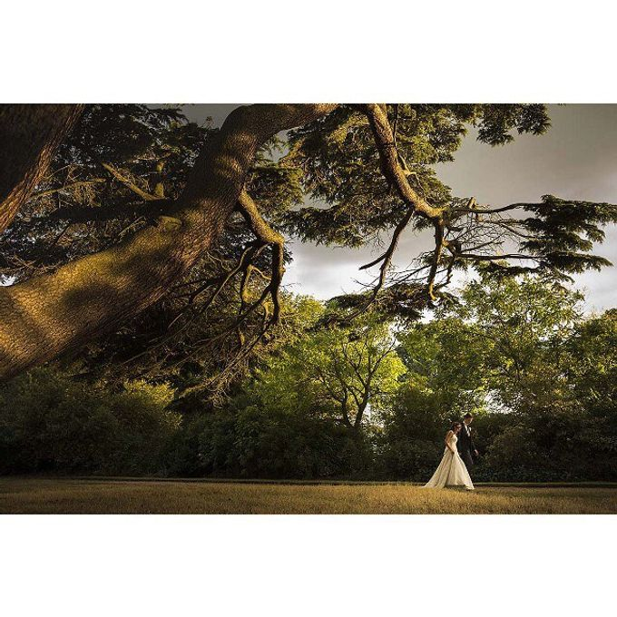 Wedding Portfolio by motiejus - 036