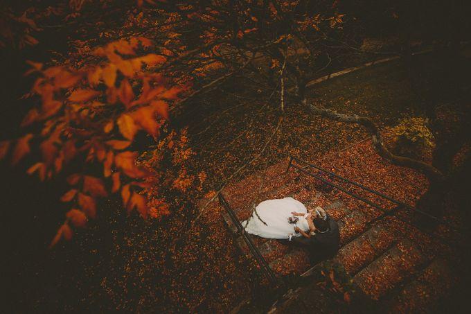 random portfolio images by Aga Tomaszek Photography - 027