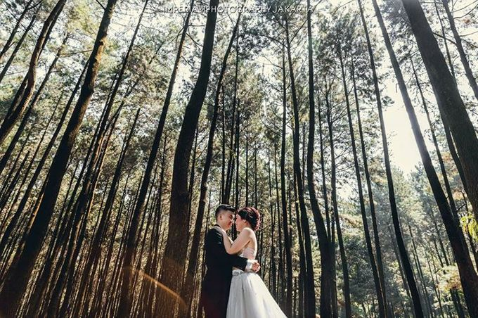 Natures Lover by Imperial Photography Jakarta - 002