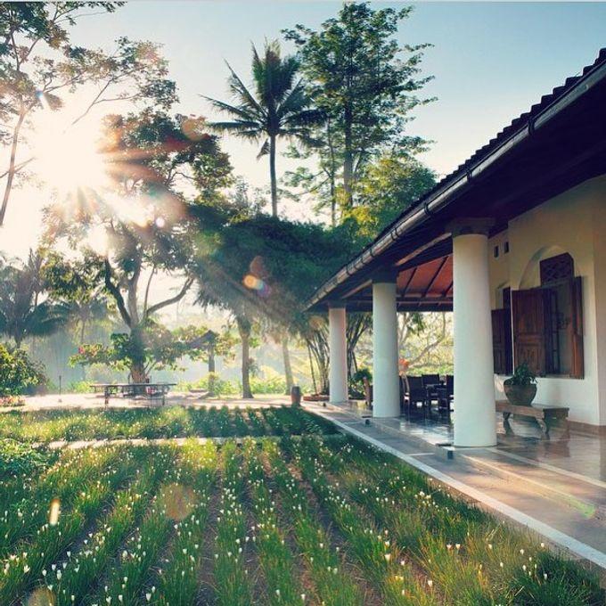 MesaStila Honeymoon Package by MesaStila Resort and Spa - 003