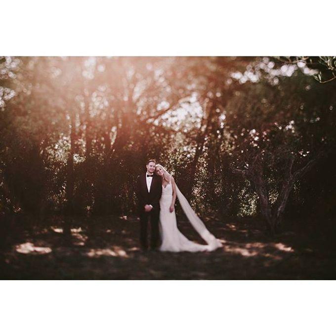 Best of Wedding Photos 2015 (Part 2) by People Truelove Tellers - 041
