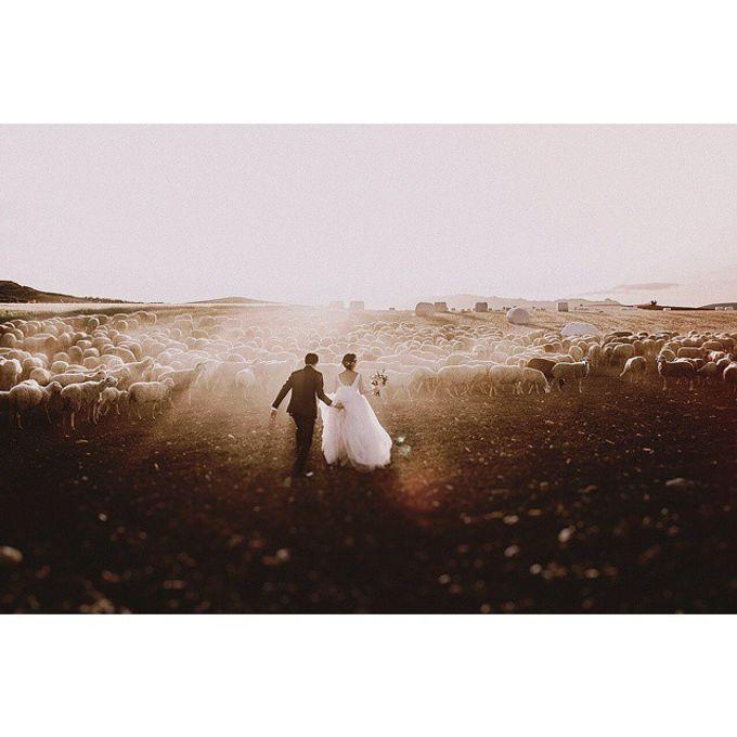 Best of Wedding Photos 2015 (Part 2) by People Truelove Tellers - 042