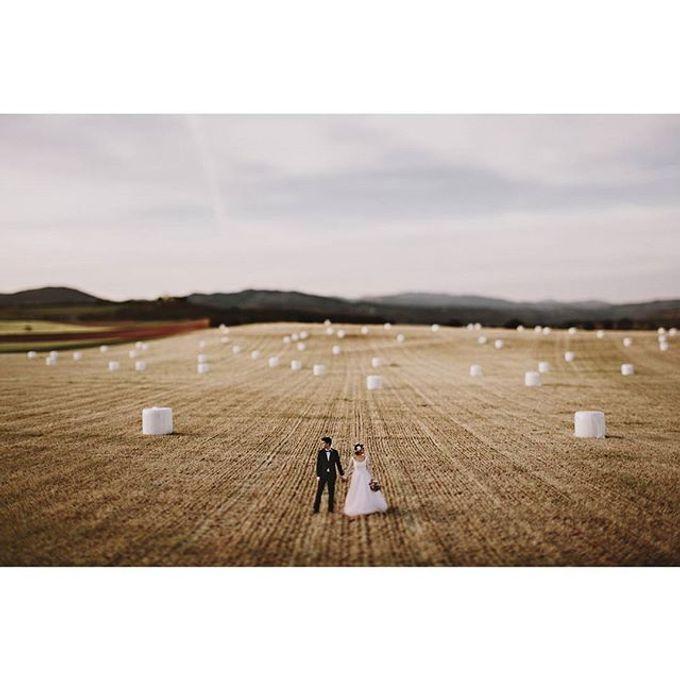 Best of Wedding Photos 2015 (Part 2) by People Truelove Tellers - 023