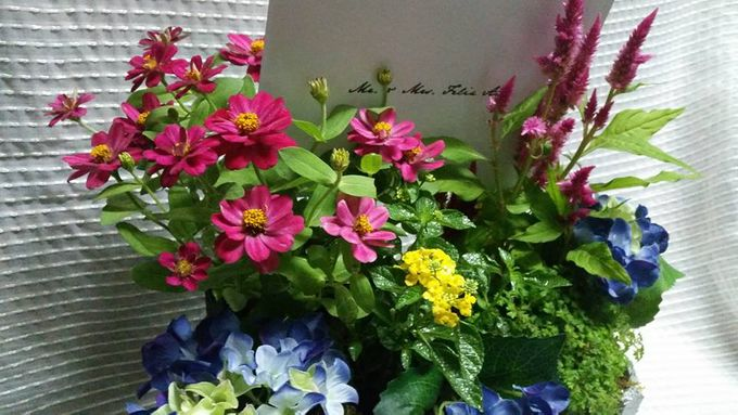 Fresh Florals by Lighthouse Blooms Flowershop - 003