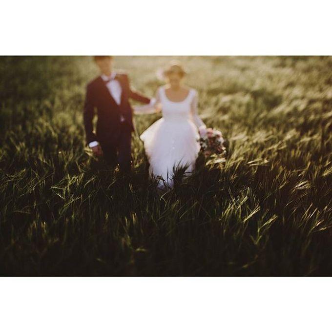 Best of Wedding Photos 2015 (Part 2) by People Truelove Tellers - 020