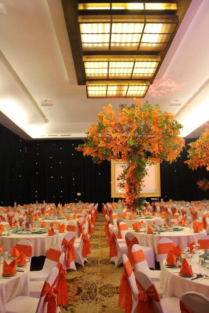 Wedding of monika andika by harris hotel convention center add to board wedding of monika andika by harris hotel convention center malang 003 junglespirit Gallery