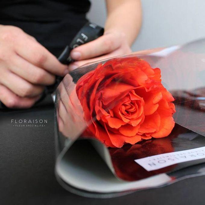 single stem by Floraison - 003