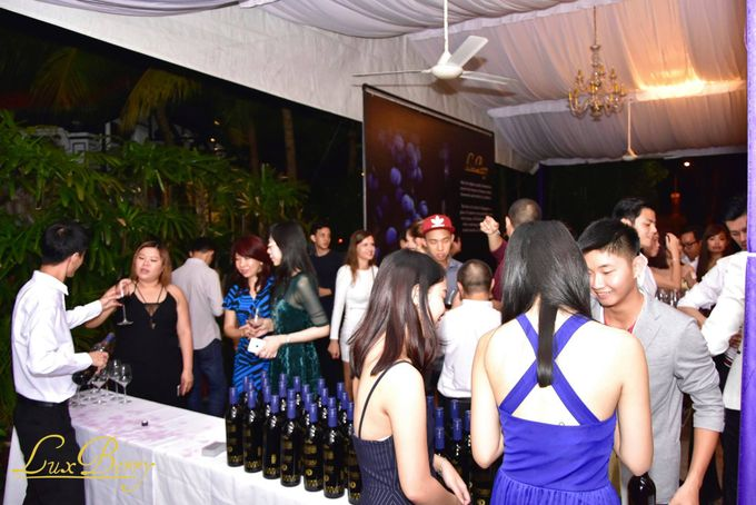 Lux Berry Blue Wine Event Launch by NOX Express - 005