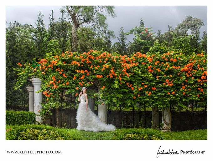 Pre-wedding Sample by Kenneth Lee Photography - 022