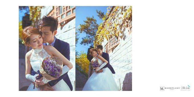 The Promise from Seoul by Whalle Studio Production - 004