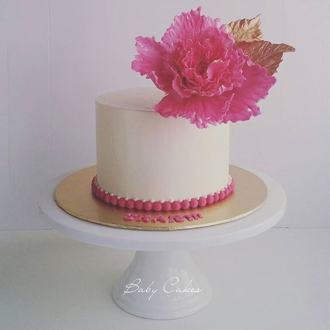Single tier and multi tiered cakes by Baby Cakes - 019