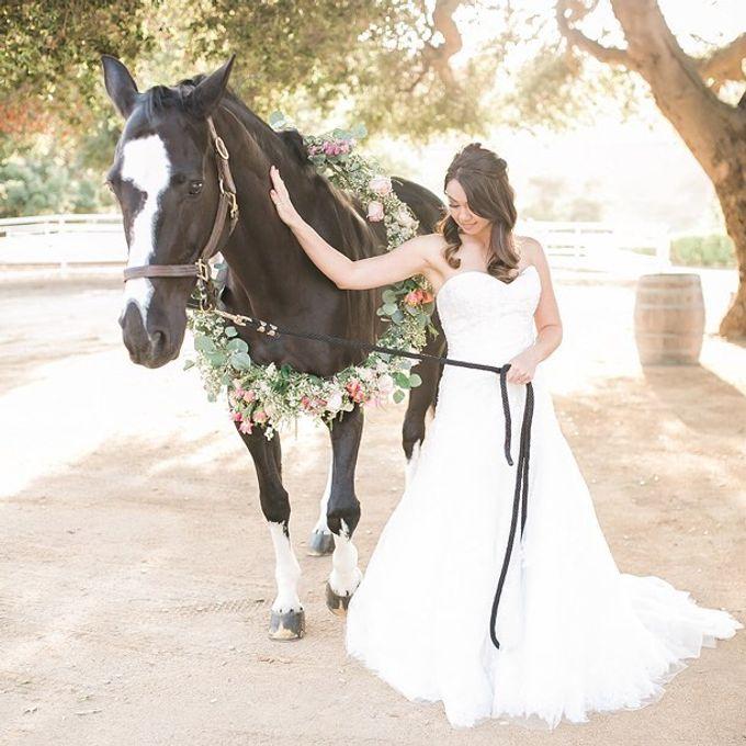 Bridal Ready to Wear by Casablanca Bridal And Tuxedo - 004