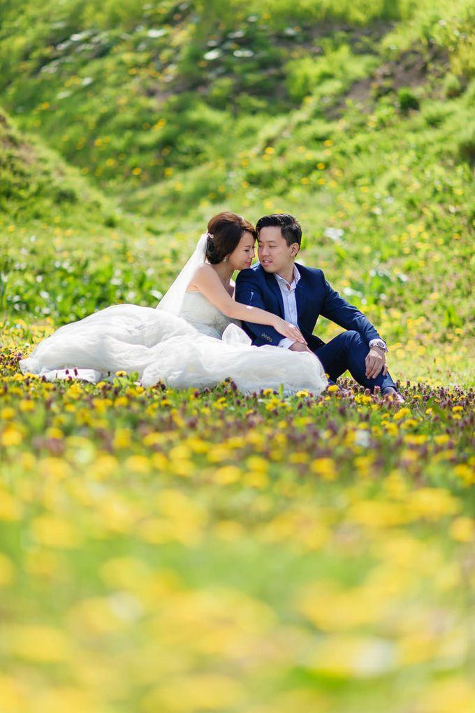 Full Bloom Hokkaido Sakura in Spring-Prewedding Overseas by John15 Photography - 012
