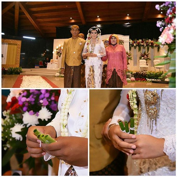 Ariff and tisha wedding