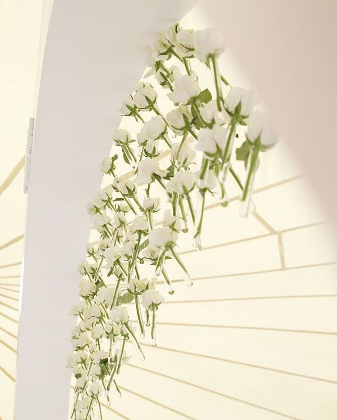 Snow-white wedding by Elena Pavlova - 002