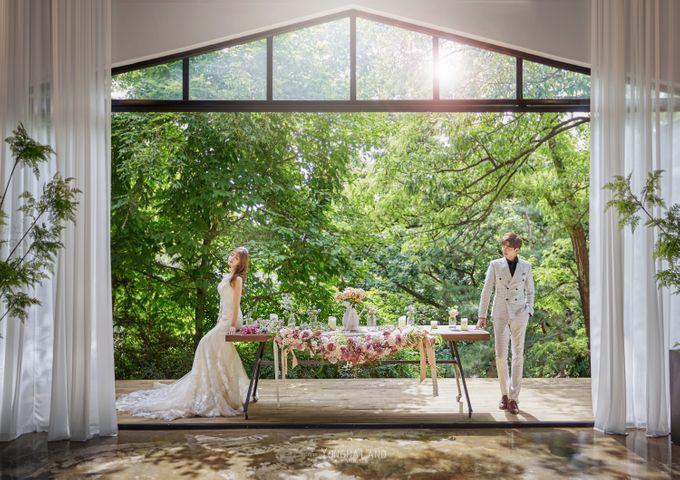 Korea Pre-Wedding Photoshoot - Studio 29 by Willcy Wedding by Willcy Wedding - Korea Pre Wedding - 009