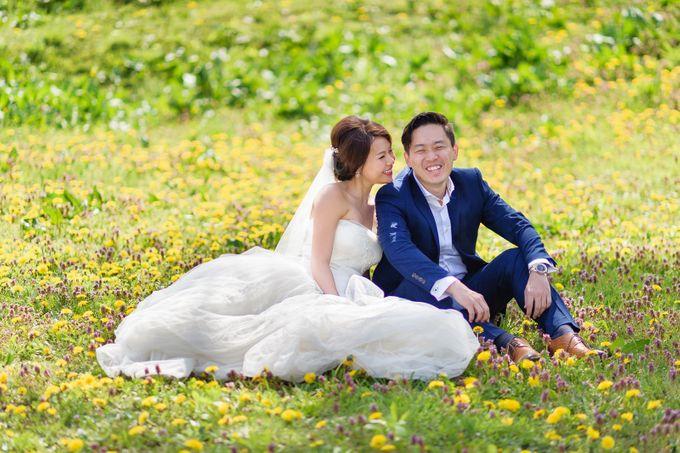 Full Bloom Hokkaido Sakura in Spring-Prewedding Overseas by John15 Photography - 013