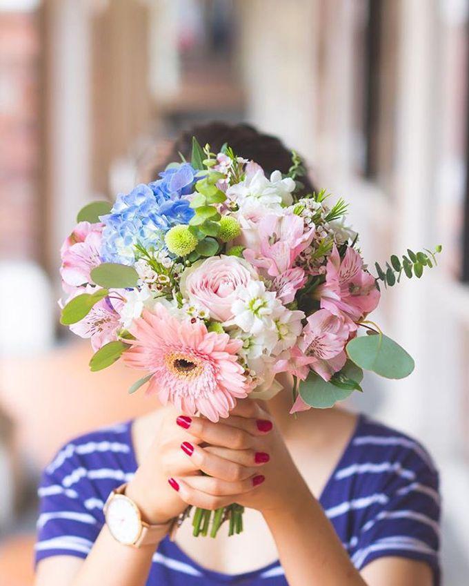 Pantone 2016 - Rose Quartz & Serenity by Liz Florals - 002