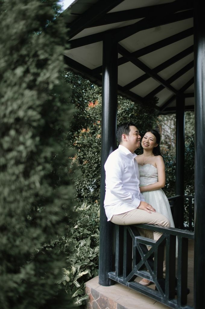 B & Y Prewed Album by Fratello Photography - 003