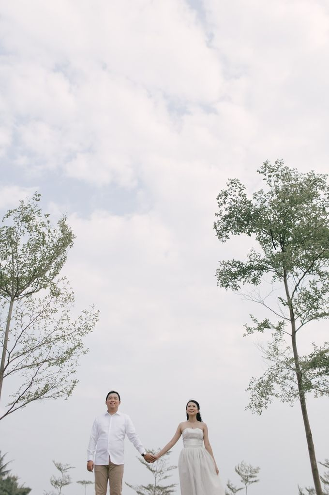 B & Y Prewed Album by Fratello Photography - 004