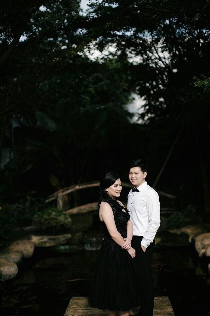 Y & V Prewed Album by Fratello Photography - 009