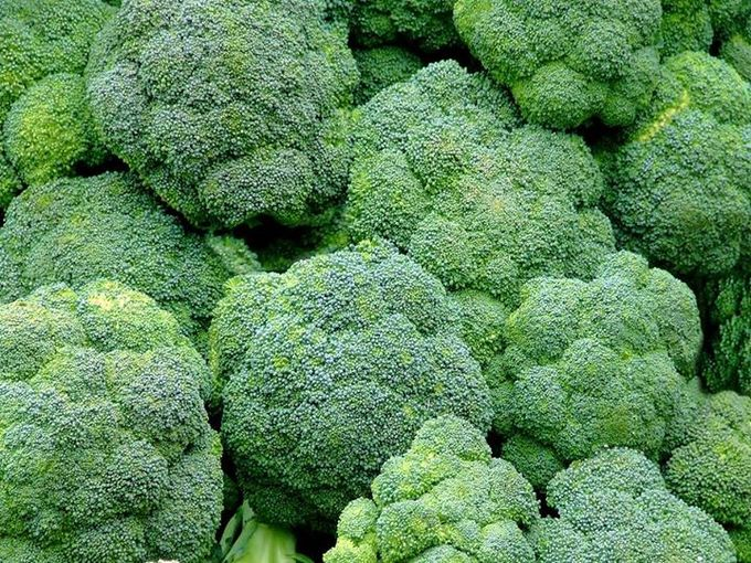 brokoli by bride test vendor - 005