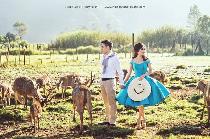 PREWEDDING OF ALBERT & WENNA by Fedya Make Up Artist - 002