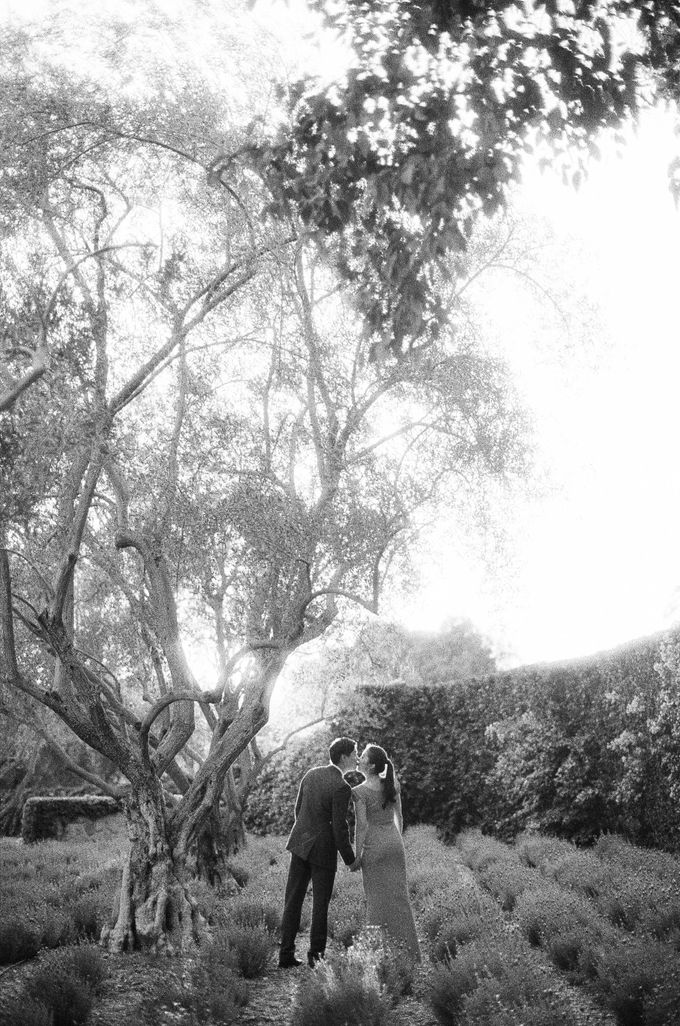 Chinese Tea Ceremony & Wedding in the Lavender Gardens of San Ysidro Ranch by Jen Huang Photo - 008