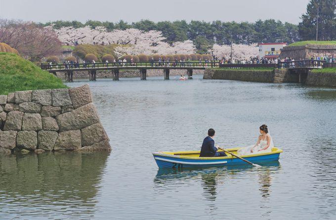 Full Bloom Hokkaido Sakura in Spring-Prewedding Overseas by John15 Photography - 016