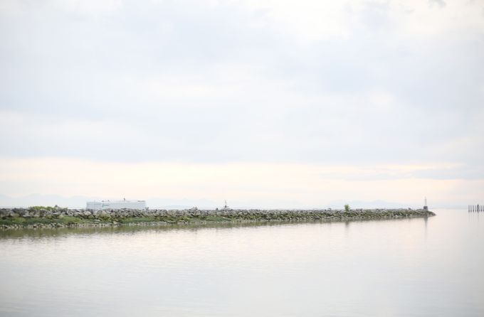 Engagement shoot at Steveston Richmond by Rebecca Ou Photography - 017