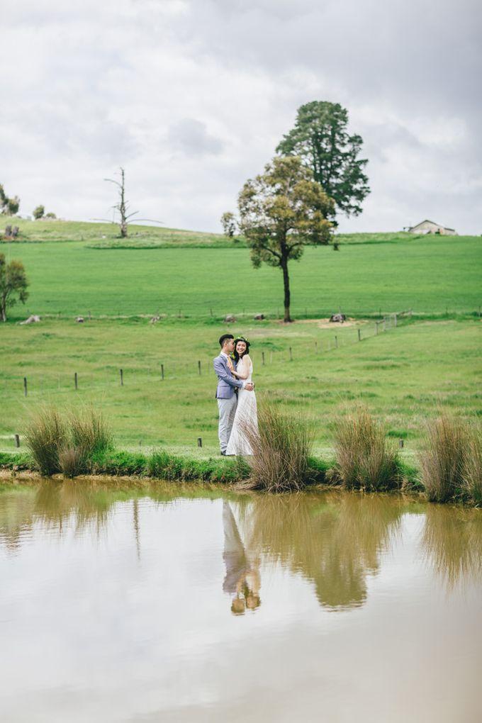 Yarra Valley Prewedding of Virginia & Felix by Widfotografia - 002